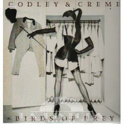 Godley and Crème - Birds Of Prey