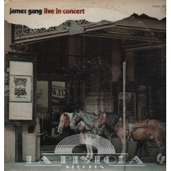 James Gang Band - Live In Concert