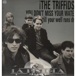 The Triffids - You Don't Miss Your Water